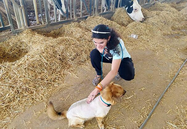 אוטיזם ובעלי חיים